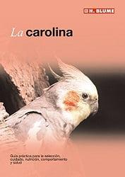 libro carolina ninfa cacatua